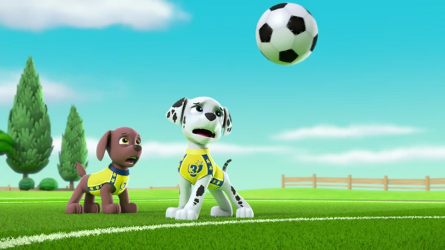 File:Pups Soccer 49.png