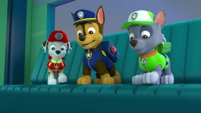 File:PAW.Patrol.S02E07.The.New.Pup.720p.WEBRip.x264.AAC 188355.jpg