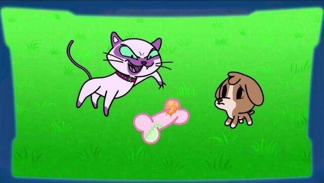 File:Cassandra the Cruelest Kitten.jpg