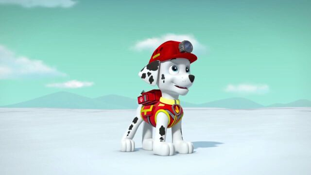 File:PAW.Patrol.S02E07.The.New.Pup.720p.WEBRip.x264.AAC 1201734.jpg