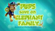 Pups Save an Elephant Family (HD)