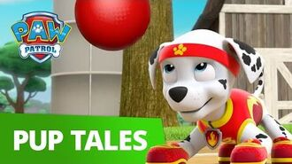 PAW Patrol All Star Pups! Rescue Episode PAW Patrol Official & Friends!