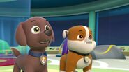 PAW.Patrol.S01E16.Pups.Save.Christmas.720p.WEBRip.x264.AAC 220053