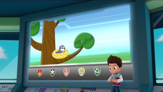 File:PAW Patrol Pups Save the Songbirds Scene 16.jpg