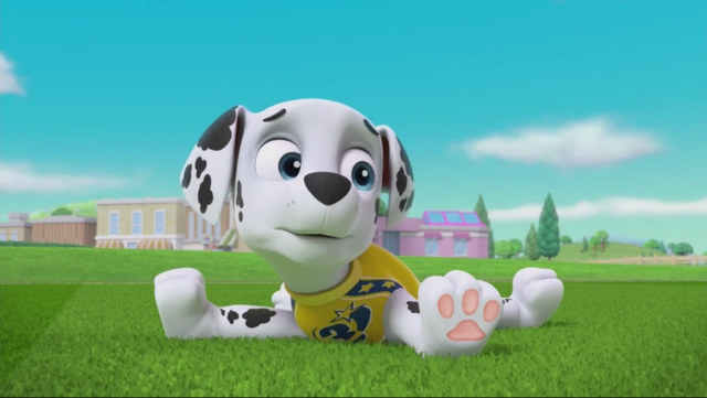 File:PAW Patrol Pups Save the Soccer Game Scene 3.png