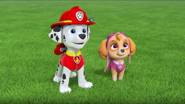 File:PAW Patrol Pups Save the Songbirds Scene 36.jpg