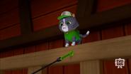 Pup-Fu!52(Cat Rocky)