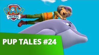 PAW Patrol Pup Tales 24 Rescue Episodes