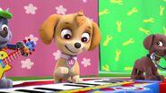 PAW Patrol Season 2 Episode 10 Pups Save a Talent Show - Pups Save the Corn Roast 245912