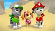 PAW.Patrol.S01E26.Pups.and.the.Pirate.Treasure.720p.WEBRip.x264.AAC 630063