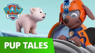 PAW Patrol Pups Save the Polar Bears Rescue Episode PAW Patrol Official & Friends!