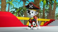 Pirate Pups 62
