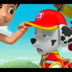 Marshall Paw Patrol Wiki Fandom Powered By Wikia