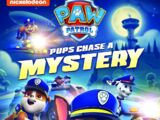 Pups Chase a Mystery