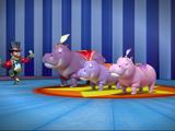 Hippo Trick