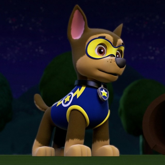 Chase Gallery Pups And The Ghost Pirate Paw Patrol Wiki