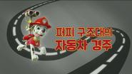 퍼피 구조대 퍼피 구조대의 자동차 경주