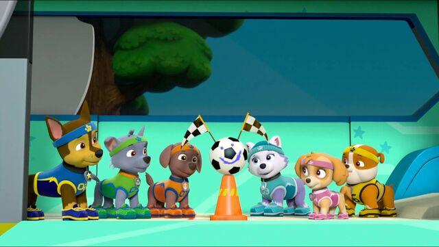 File:All Star Pups! 8.jpg