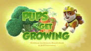 Pups Get Growing (HD)