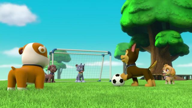 File:Pups Soccer 4.png