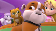 103-paw-patrol-kitty-catastrophe-16x9