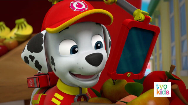 File:PAW Patrol Pups Save the Critters Marshall 1.jpg