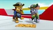 Pirate Pups 25