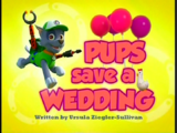 Pups Save a Wedding/Gallery