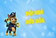 Những chú chó cứu hộ Đội chó cứu hỏa