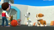 PAW.Patrol.S01E26.Pups.and.the.Pirate.Treasure.720p.WEBRip.x264.AAC 151918