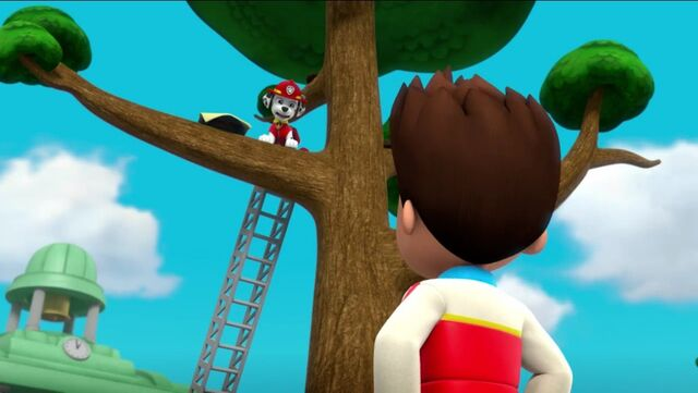 File:PAW Patrol Pups Save the Songbirds Scene 21.jpg