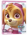 PAW Patrol Skye Collection DVD