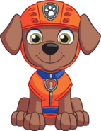 Nickelodeon Nick Jr. PAW Patrol Zuma From Front 2D