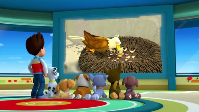File:PAW.Patrol.S01E21.Pups.Save.the.Easter.Egg.Hunt.720p.WEBRip.x264.AAC 1357389.jpg
