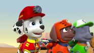PAW.Patrol.S02E07.The.New.Pup.720p.WEBRip.x264.AAC 156289