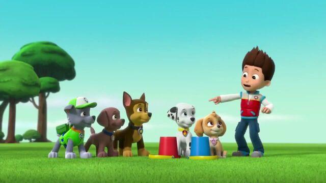 File:PAW Patrol Season 2 Episode 10 Pups Save a Talent Show - Pups Save the Corn Roast 150651.jpg
