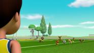 Pups Soccer 37