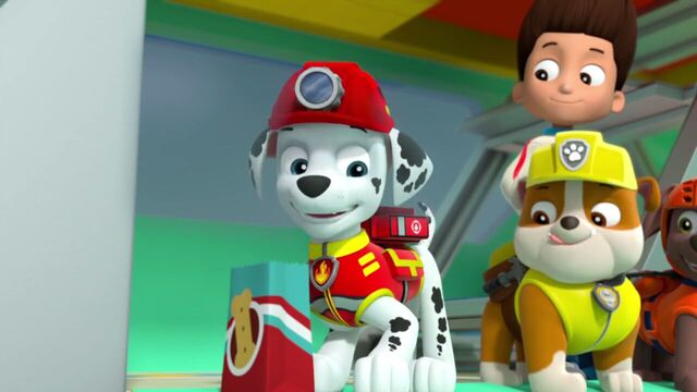 File:PAW.Patrol.S02E07.The.New.Pup.720p.WEBRip.x264.AAC 1212645.jpg