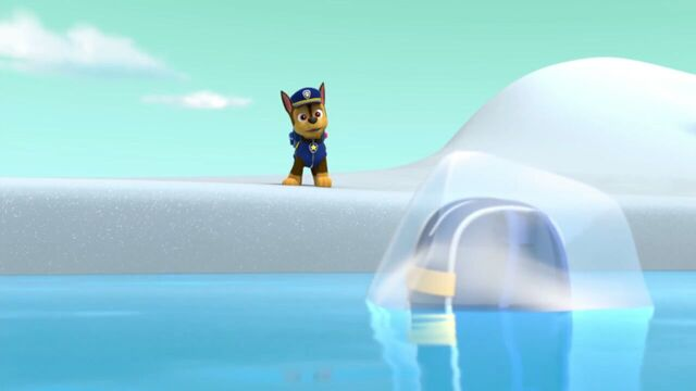 File:PAW.Patrol.S02E07.The.New.Pup.720p.WEBRip.x264.AAC 810810.jpg