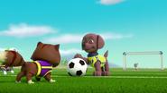 Pups Soccer 44