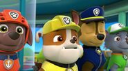PAW.Patrol.S01E26.Pups.and.the.Pirate.Treasure.720p.WEBRip.x264.AAC 239306