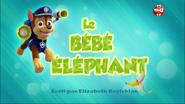 PAW Patrol La Pat' Patrouille Le Bébé éléphant