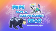Pups Save a Sleepwalking Bear (HQ)