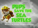 Pups Save the Sea Turtles