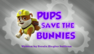 Pups Save the Bunnies