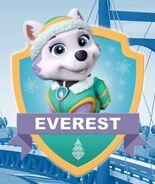Everest ygj7