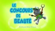 PAW Patrol La Pat' Patrouille Le Concours de beauté