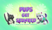 Pups Get Skunked (HQ)