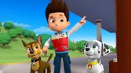 Monkey (Marshall, Chase, and Ryder)