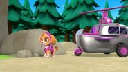 PAW.Patrol.S01E26.Pups.and.the.Pirate.Treasure.720p.WEBRip.x264.AAC 697497